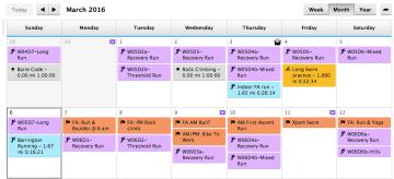 Garmin Connect Calendar Workout Data