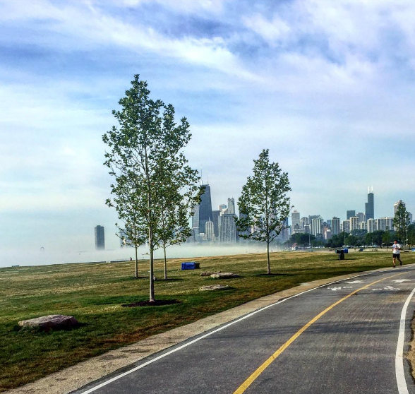 Chicago Lakefront Trail Bike Path